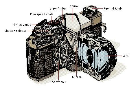 camera parts diagram iPhone Camera Parts Diagram